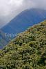 Peru - Day 7 #2