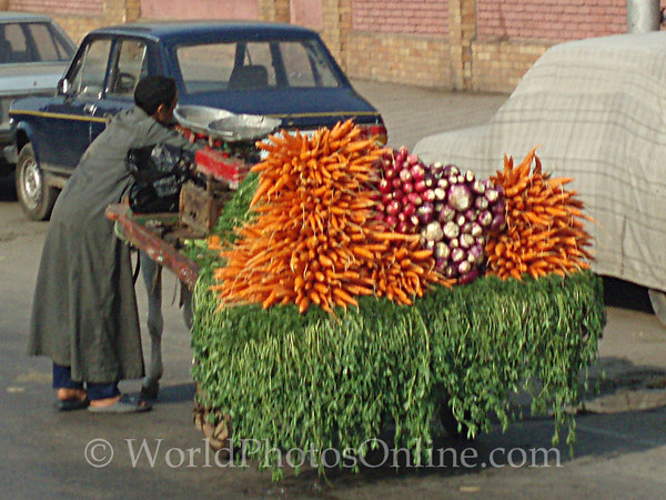 Cairo - Selling Carrots and Radishes