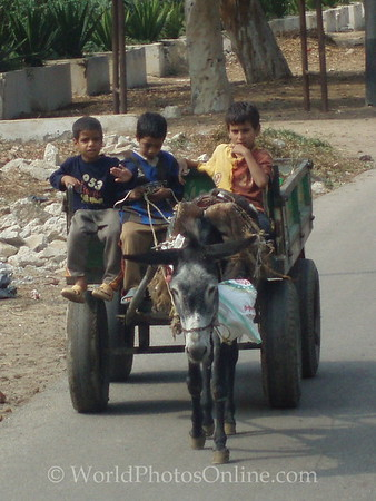 Memphis - Kids in Wagon
