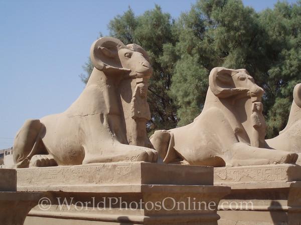Karnak - Avenue of Ram-Headed Sphinxes 1