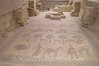 Mt Nebo - Moses Memorial Church - Mosaic Floor
