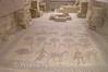 Mt Nebo - Moses Memorial Church - Mosaic Floor