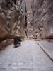 Petra - Siq - Roman pavement