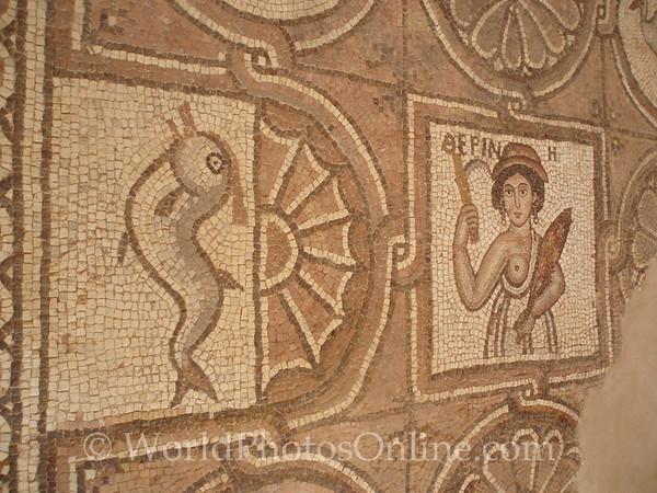 Petra - Byzantine (Ridge) Church - Mosaic Floor detail