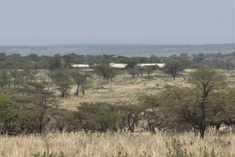 Our camp in the Serengeti