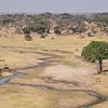 Dry River in Tarangire park