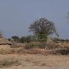 African Village near Tarangire Park