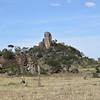 Elephant Rock in the Serengeti