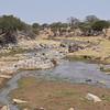River in Tarangire Park