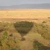 Shadow of the balloon across the Mara plains