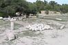 Carthage - Roman Carthage - Catapult stones