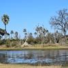 DSC_0254 w Okavango Delta
