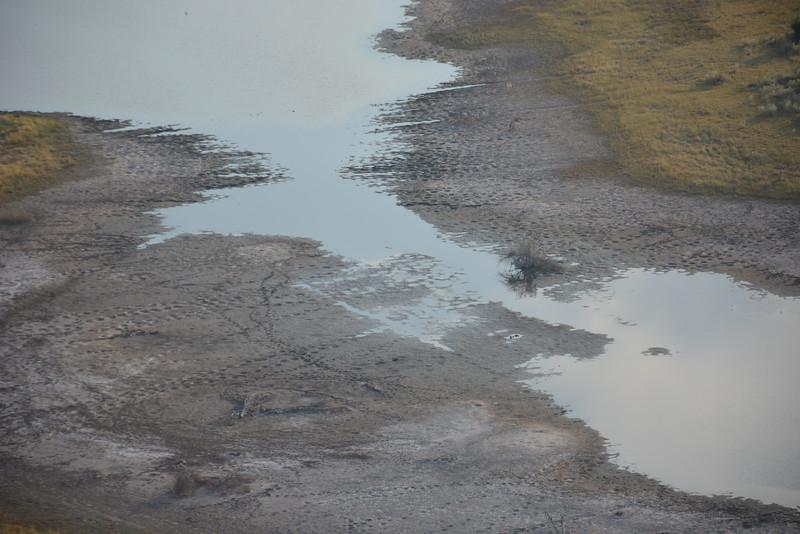 Elephant Footprints, Okavango Delta, Botswana