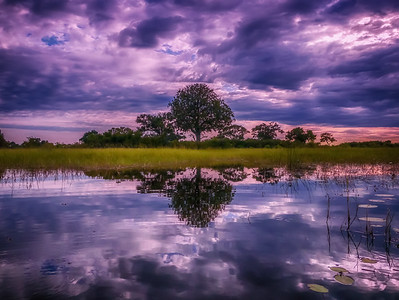 African Reflections