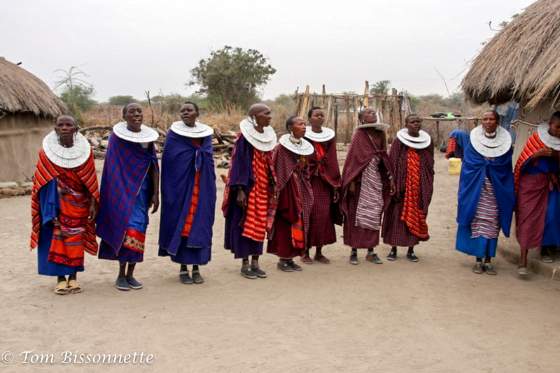Massai women dance and sing our welcome!