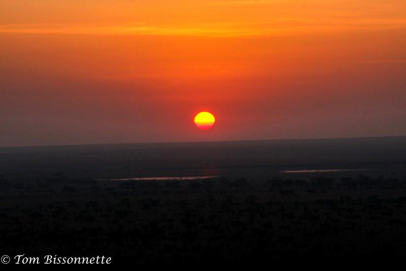 Serengetti Sunrise! Serengeti National Park, Tanzania, East Africa.
