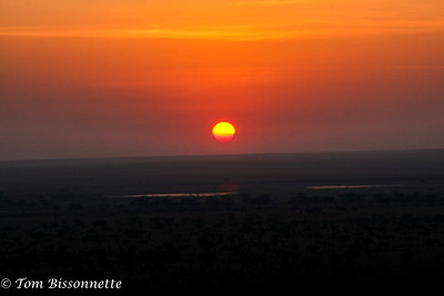 Serengetti Sunrise! Serengeti National Park, Tanzania, East Africa.