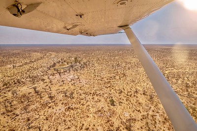 Shot from a small safari charter plane, showing a panoramic view of a parched and barren Botswana landscape, including dry waterholes, during the annual dry season in southern Africa.