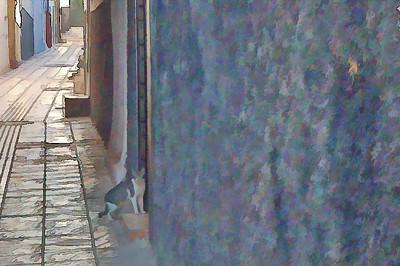 Cat in Door