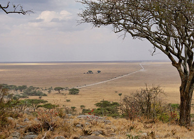 Serengeti Plains in the Serengeti National Park, Tanzania