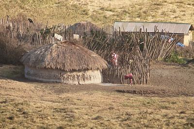 Masai Village in the Ngorongoro Crater, Tanzania