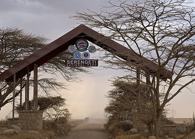 The Serengeti National Park, Tanzania