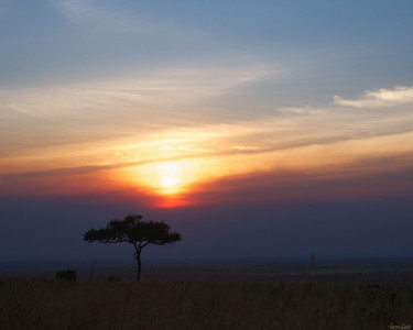 Sunset in the Maasai Mara National Reserve, Kenya