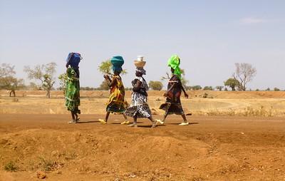 Femmes peulhs en route pour le marché