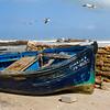 Essaouira-7037-01z