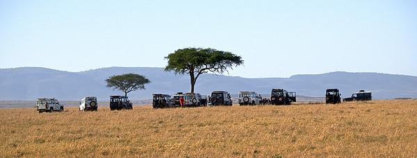 Middag i det fri for de bedre stilte. Masai Mara, oktober 2007 *** Lunch for the better suited, Masai Mara, October 2007. (Foto: Geir)