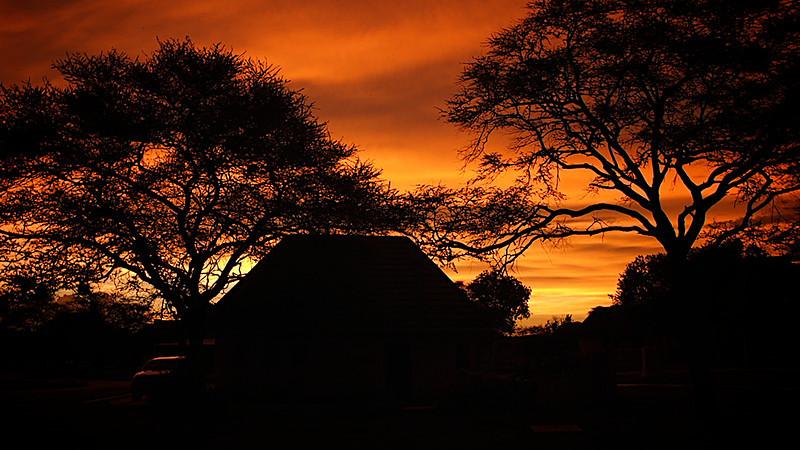 Under African Skies. Foto: Geir