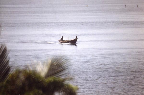 River life on the Lagos river. --- Elveliv på Lagos-elva.  (Foto: Geir)