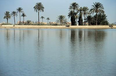 Marrakech - Bassin de la Ménara - مراكش