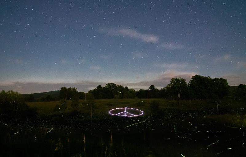 Peace Love and Fireflies