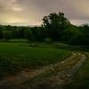 Firefly Path