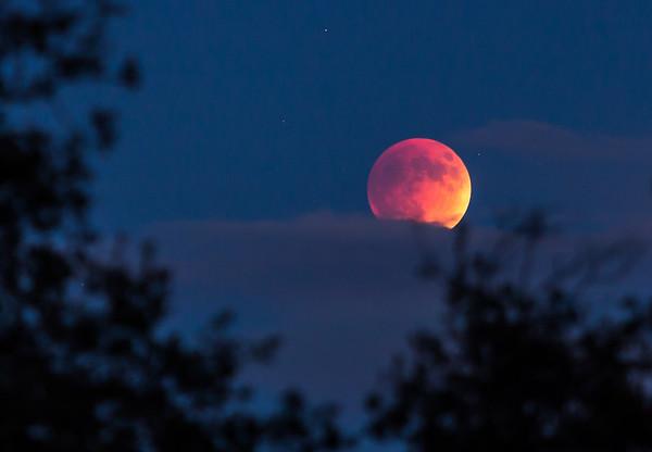 Super Blood Moon 472