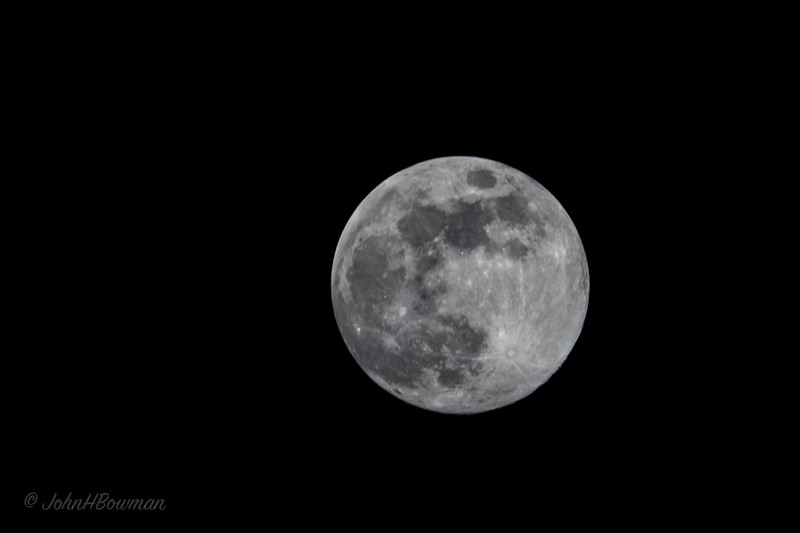 "Techically, according to 2018 Moon Phases Calendar, full moon is achieved at 8:37am EDT March 31, so this, at 11:16pm Marcch 30, was taken >9 hours before full stage - but close enough; used 80D with 100-400 at 400mm for effective focal length of 640mm; CPOL used, but hard to adjust with camera pointed up sharply to avoid tree branches across face of moon, making lens even more cumbersome; as this is 2nd full moon during March, it is a ""blue moon"" - 2nd blue moon of 2018, but last 1 until 2020"