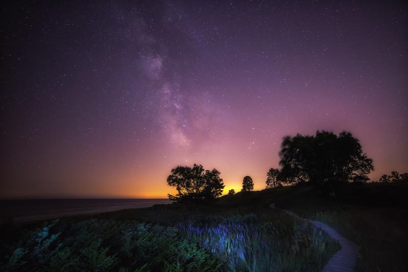 Nature Walk At Night