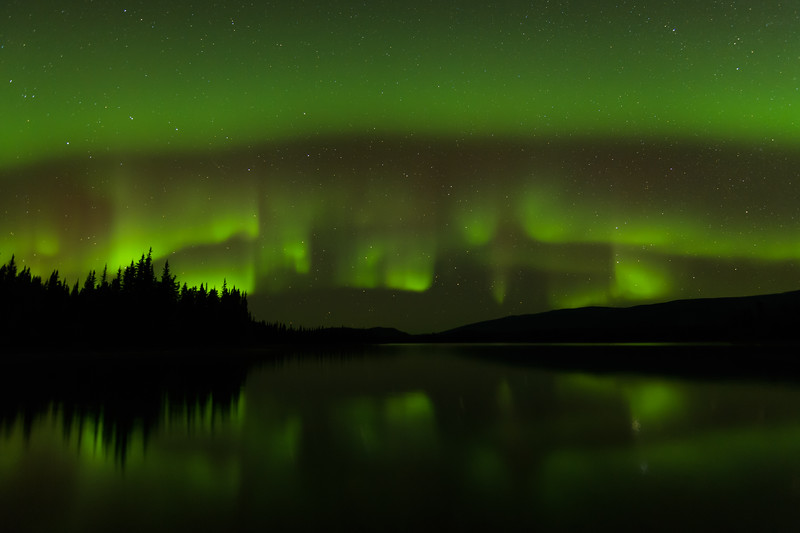 Aurora - The Night Lights of the North