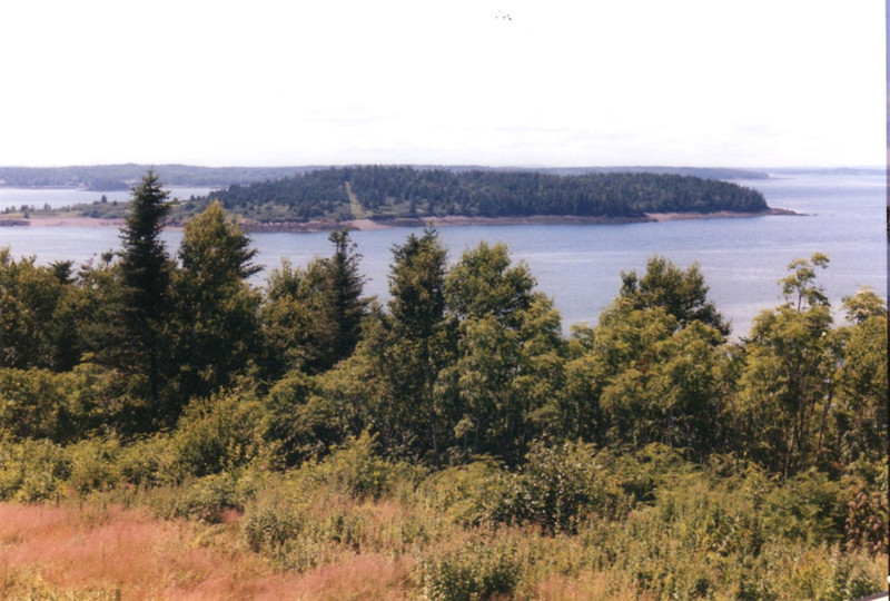 View of Treat's Island from the Friar's Head viewpoint on Campobello Island. To reach the viewpoint, go over the international bridge to the island and look for the road to the viewpoint on the left before Roosevelt Campobello International Park.