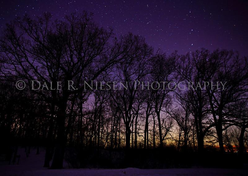 The Aurora Borealis through an old oak woods Portage Lake, Jackson County, Michigan taken 2/27/2014