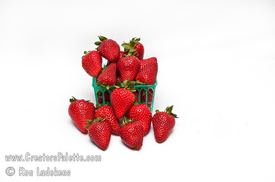 Albion Strawberry (Fragaria sp.) Known for its large to very large fruit.  Fruit is mostly conical, very firm and red in color.  Its flavor is very good for a day-neutral and is sweet and pleasant. It is a high yielding cultivar with robust runners and stalks. Resistant to verticullium wilt and phytohthora crown rot.