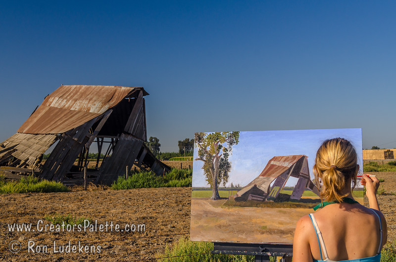 Heidi Steinman - artist.  Painting the same old milk barn that I have been photographing for many years.