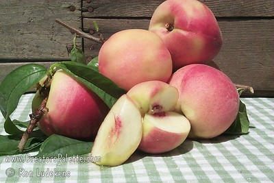 Giant Babcock Peach (Prunus persica sp.) Large. Skin predominantly red. White flesh streaked outwardly from stone with shades of red. Sweet and juicy. Freestone. Requires approximately 400 hours chilling. Ripens: July, two weeks after Babcock.