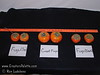 Fuyu (various) Persimmon comparison photo (Diospyros kaki)<br /> Fuyu (Jiro), Giant Futu, Fuyu (Imoto)