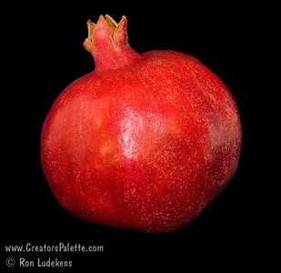 Angel Red® Pomegranate (Punica granatum) on 9-21-2006 Bright red, large fruit produced nearly a month ahead of Wonderful Pomegranate.  Early to market.  Excellent flavor.  Yields high volumes of antioxident juice and lower than normal waste pulp.  Very soft seed.  Ripens late August to early September in Central Valley of California.  Drought tolerant.