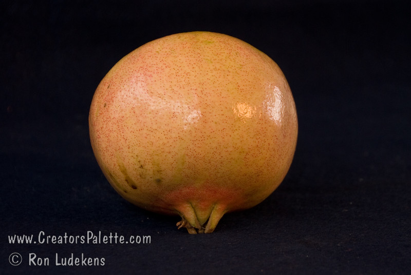 Utah Sweet Pomegranate - Punica granatum<br /> Very sweet, good quality fruit.  Pink skin and pulp.  Seeds notably softer than those of Wonderful.  Non-staining.  Attractive pinkish-orange flowers. Ripens mid October to early November.  Drought tolerant.