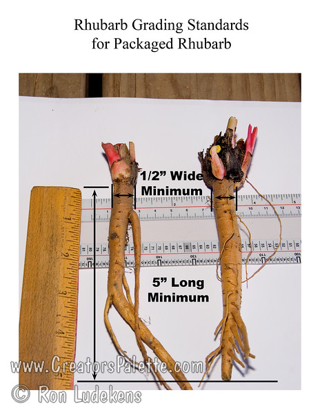 Minimum grading standards for L.E. Cooke when putting into the packaged product.
