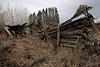 Fallen log house
