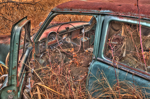 An abandoned Ford Customline rusting away in a field.